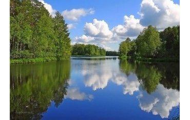 В Ленинградской области усилят безопасность в традиционных местах отдыха и купаний